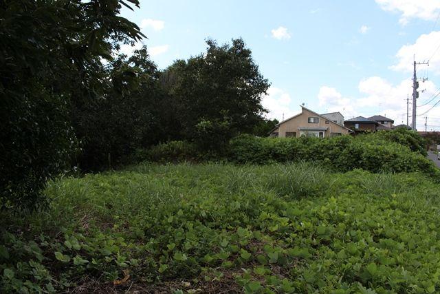敷地内、北西側から撮影