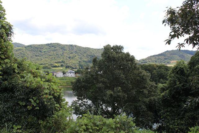敷地内から南東側の景色